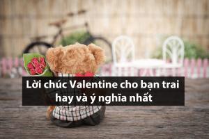 Top 20+ Lời chúc Valentine cho bạn trai hay và ý nghĩa nhất 2020